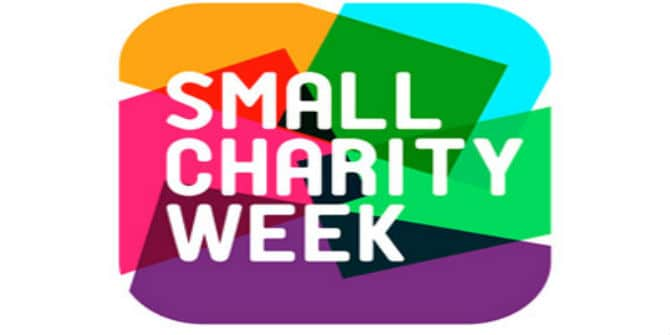 Small-Charity-Week-1