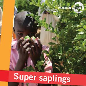 super saplings