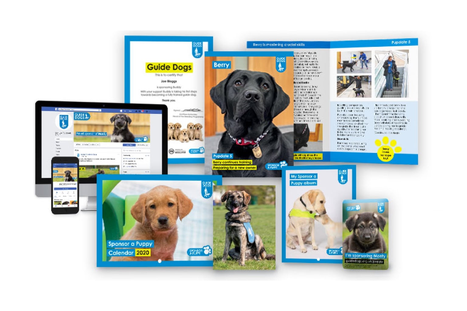 Sponsor a Puppy Hope