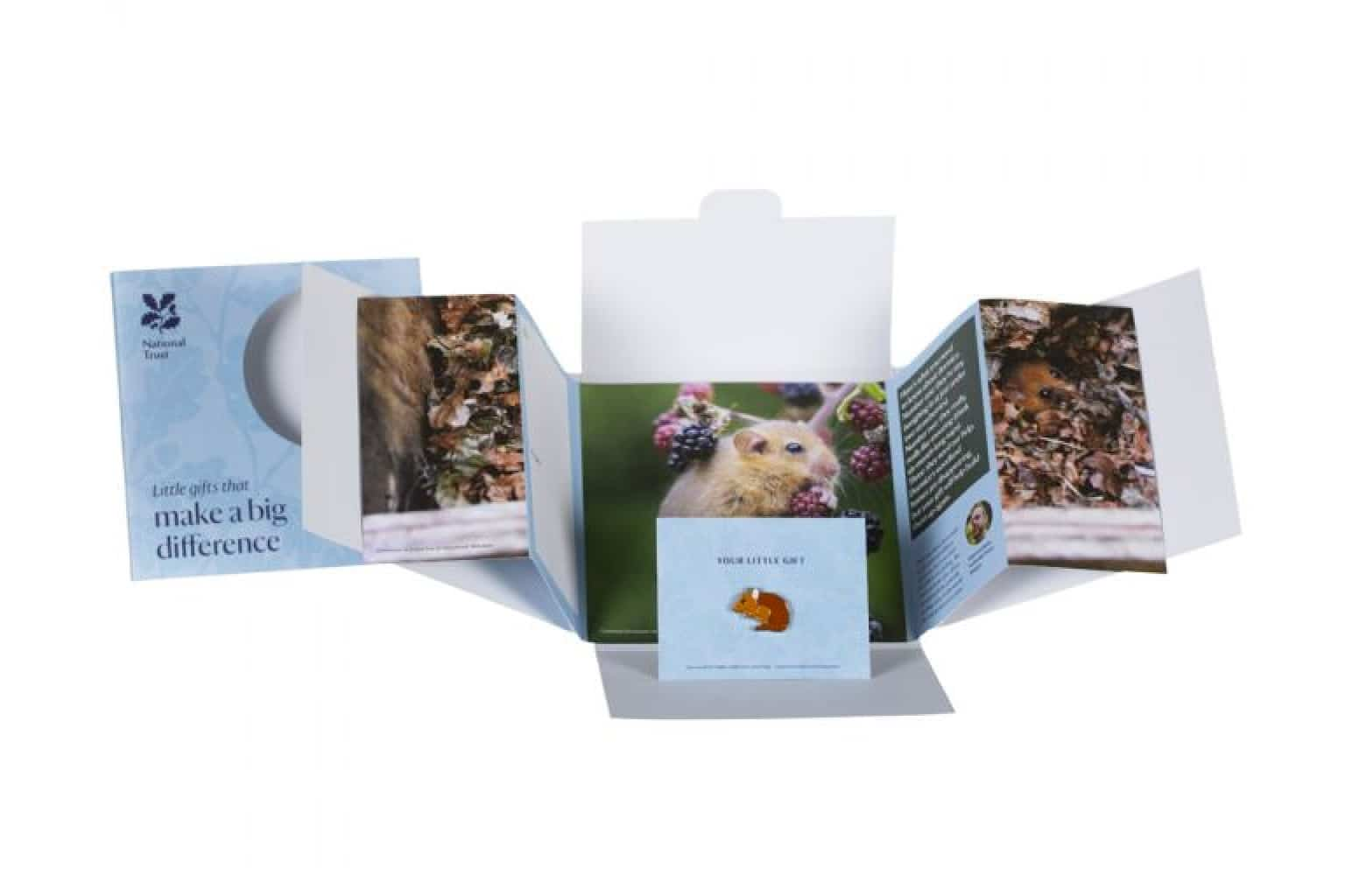Small Wonder Gift, Dormouse