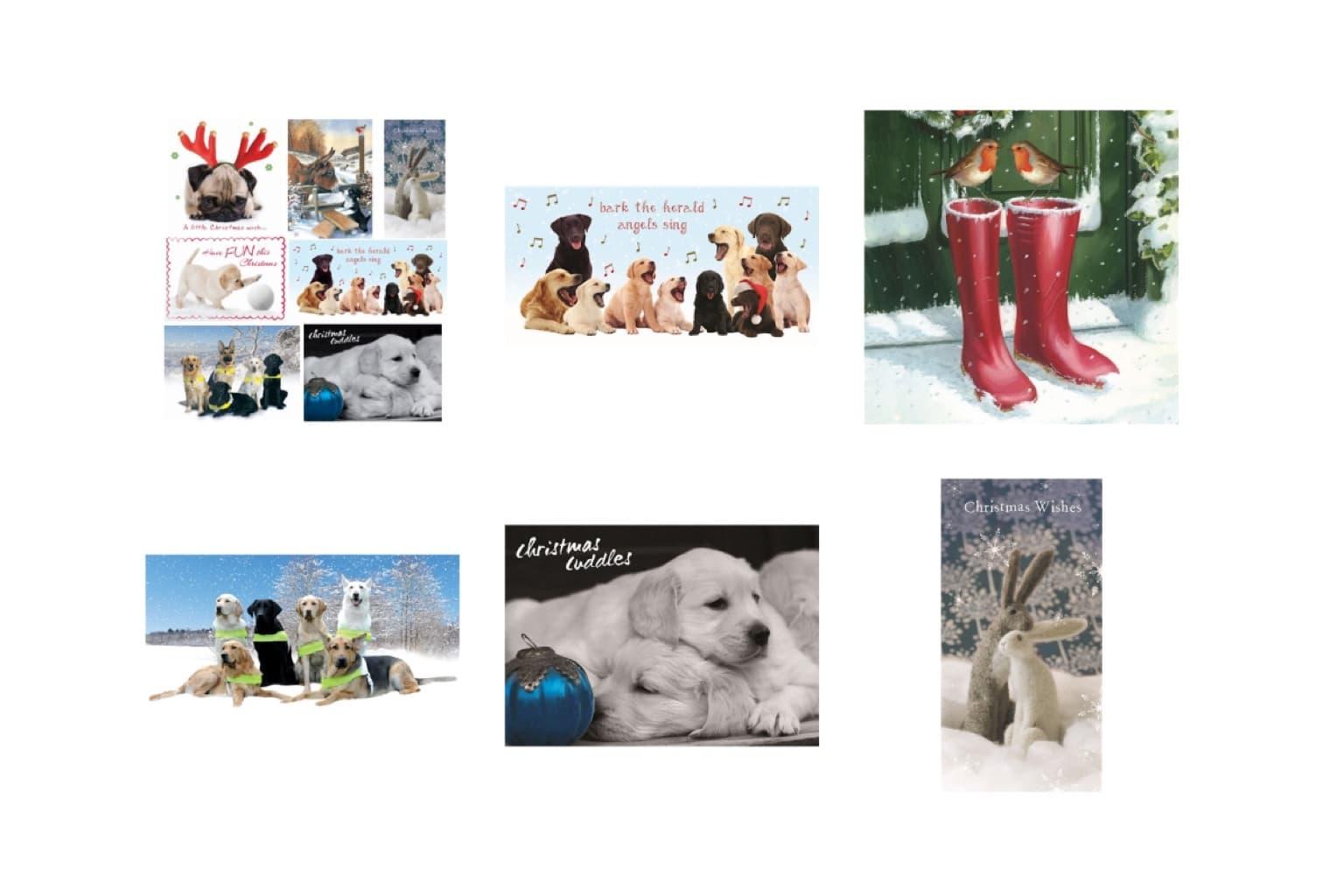Christmas Card & Wrap