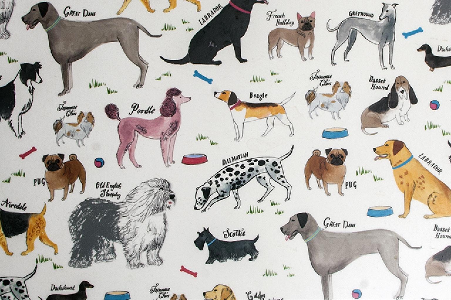Debonair Dogs Complete Set